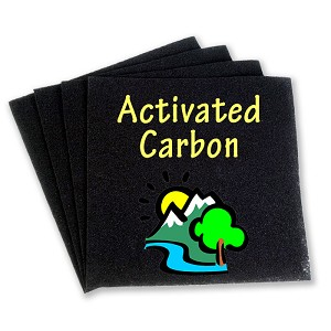 Carbon Air Filters   (2 Pack)