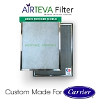 AIRTEVA Biosponge - Carrier edition with a year supply of (6) Biosponge refills