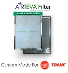 AIRTEVA Biosponge - Trane edition with a year supply of (6) Biosponge refills