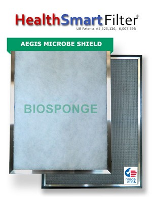 20x20x1 A/C Furnace Air Filter, HealthSmart Frame & 6-Pack Biosponge